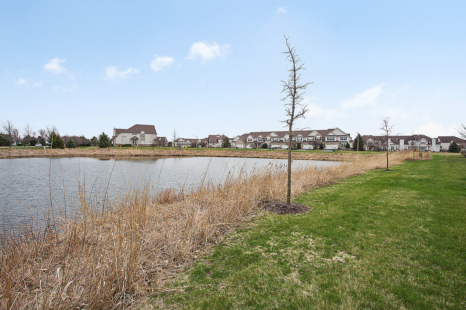 11909  Holly Court-7